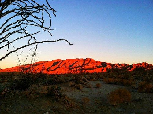 Desert Sunrise Magic on Whale Peak