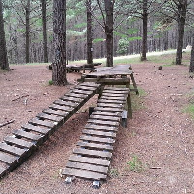 Some of the riding obstacles for those keen to try.