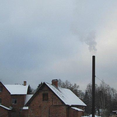 Приютино зимой