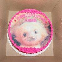 GLUTEN FREE custom picture cake (baby sloth print)