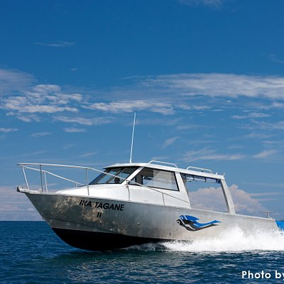 Jean-Michel Cousteau Diving offers three high speed boats, each accommodating 12 divers. We boas
