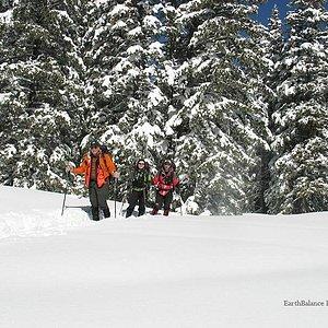 Winsor Trail in winter - Billy Johnson