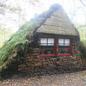 Traditional peet built house