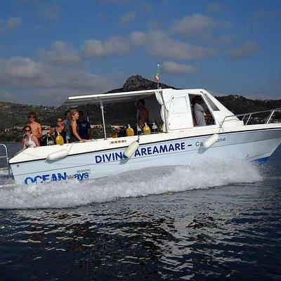 Bococa, la barca del Diving Areamare