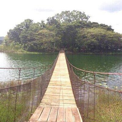 ponte che unisce i due isolotti dov è dislocato lo zoo
