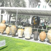 Museo dell'Olivo