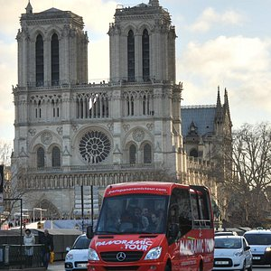 Paris Panoramic Tour with Notre Dame in the Distance
