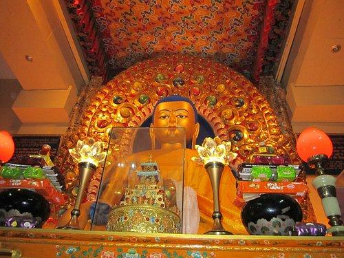 Statue of Lord Buddha in the sacred Dalai Lama Temple