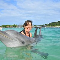 Happy encounter with Pigeon, the dolphin, in Roatan