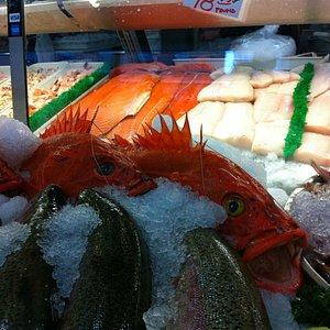 Incredibly fresh at City Fish Co.