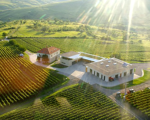 LacertA Winery from the helicopter