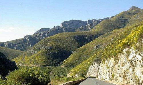 scenic drive through the Tradouwpas