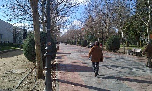 Paseo de entrada al Parque Gasset