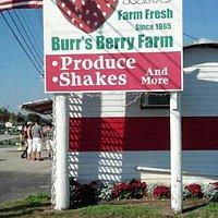 Burr's January 2013