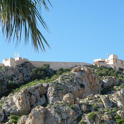 The castle - a long clim