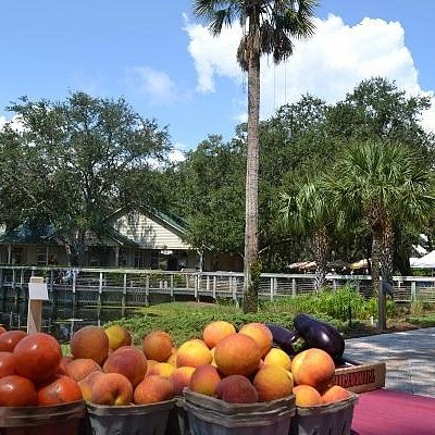 The Amelia Farmers Market at the Omni Amelia Island Plantation