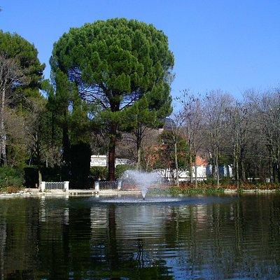 Laguito con chorro de agua y pinos