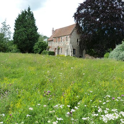 Greyfriars Chapel & wildflower meadow
