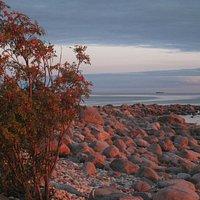 Plage de rochers à côté du phare