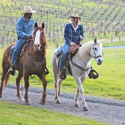 Riding in the vineyard at Jack London State Historic Park, Glen Ellen, CA