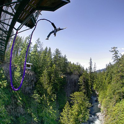 Bungee!!