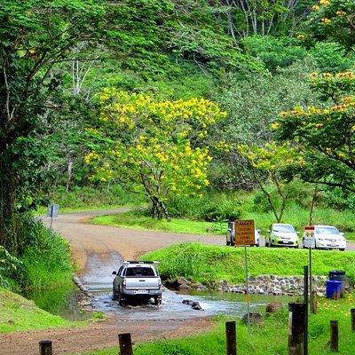 Keahua Arboretum on Kauai, Hawaii
