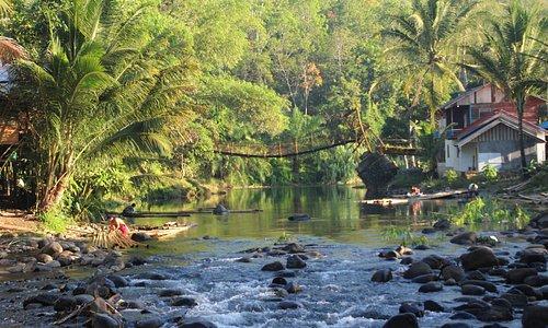 Constructing bamboo rafts on the Ambit River, Loksado