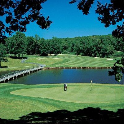 Golden Eagle Golf
