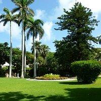 Somers Garden