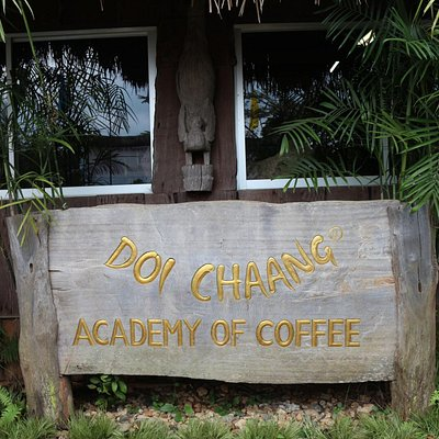Coffee Academy Built By The Villagers To Train Farmers
