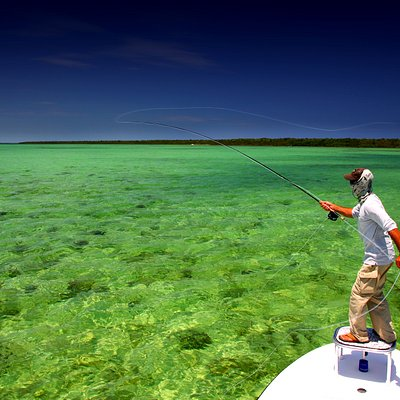 Shallow Tails Guide Service, Inc Fly fishing in Biscayne Bay Miami, Florida