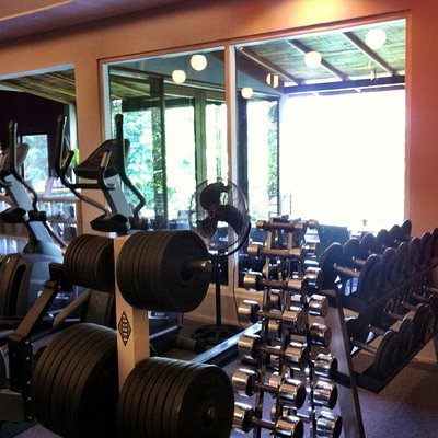 Free weights and treadmills with a view