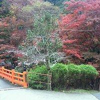 朱塗りの欄干が紅葉に映える