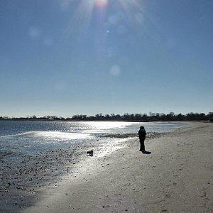 Nice relaxing walk along short beach in November!