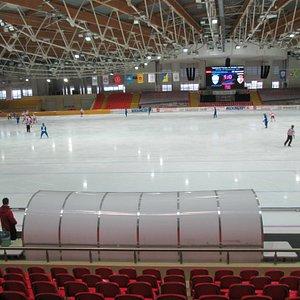 Во время матча по хоккею с мячом