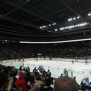 View of rink and arena