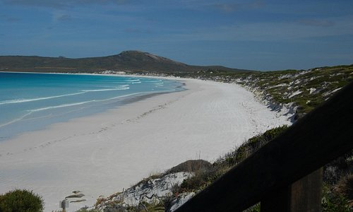 Lucky Bay, Cape Le Grande