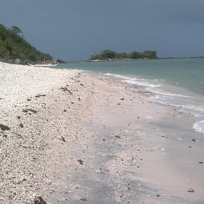 a long mound of shells and corals swept up by the waves
