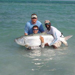 Tampa bay fishing tarpon