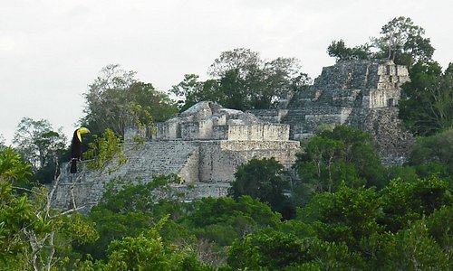 Overview of Structure II at Calakmul Archaeological site