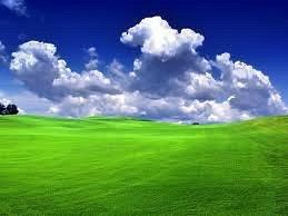 Green field PLC