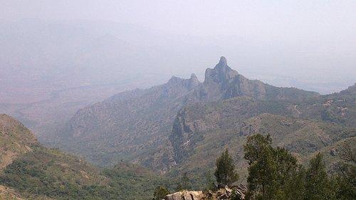 Kodanad View