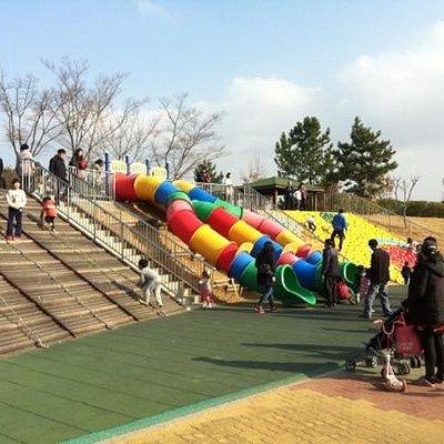 north playground