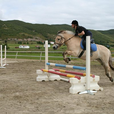 """Mass Balder"" at one of the jumpingcamps we had"