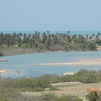 Lagoa e coqueiros