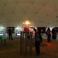 Inside the Meteorites Museum