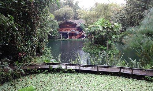 Lago Mindo pond