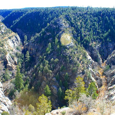View of Walnut Canyon from the rim.