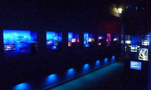 Future Oceans Gallery