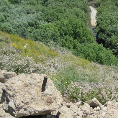 View from up top to the closed portion of the old San Francisquito Road below,